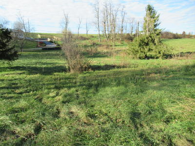 Maxwelton WV Residential Lots & Land For Sale: $38,000