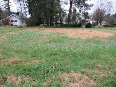 Alderson WV Residential Lots & Land For Sale: $3,800