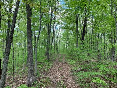 Alderson WV Residential Lots & Land For Sale: $229,000
