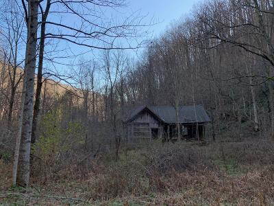 Alderson WV Residential Lots & Land For Sale: $195,000