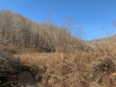 Alderson WV Residential Lots & Land For Sale: $62,900