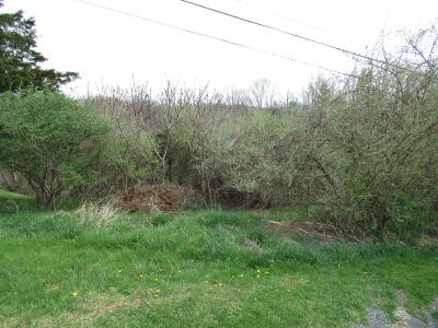 Ronceverte WV Residential Lots & Land For Sale: $10,000