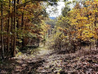 Residential Lots & Land For Sale: Little Wolf Creek