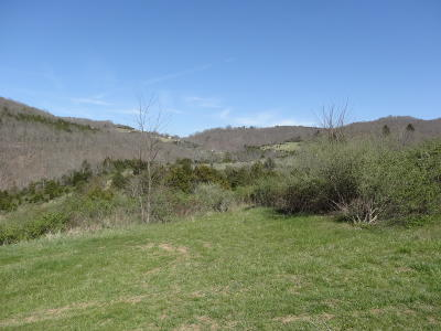 Residential Lots & Land For Sale: Bostic Lane
