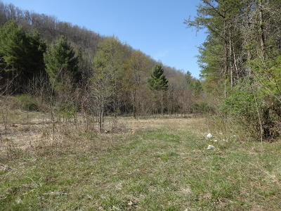 Greenbrier County Residential Lots & Land For Sale: Lot 77 Harts Run Road
