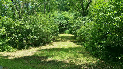 Greenbrier County Residential Lots & Land For Sale: Lot 6 Jonah's Landing