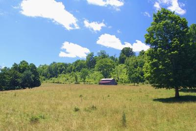 Cass WV Farm For Sale: $850,000