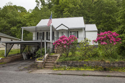 Greenbrier County Single Family Home For Sale: 135 W Virginia Ave