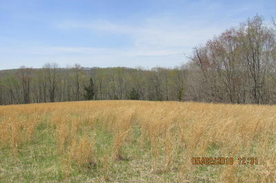 Greenville WV Residential Lots & Land Pending: $115,000