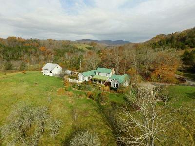 Union Single Family Home For Sale: 172 Pyne Mountain Rd