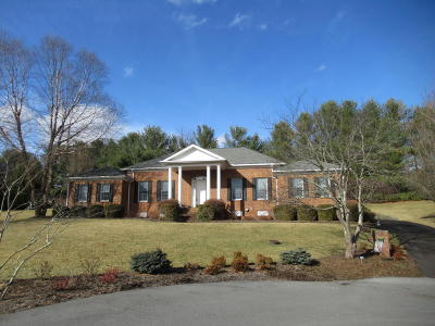 Lewisburg Single Family Home For Sale: 217 Via Largo Drive