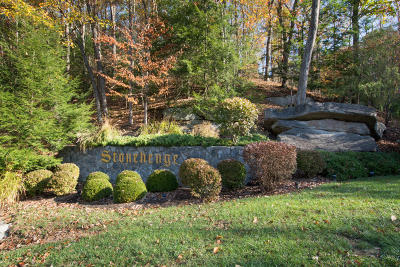Lewisburg WV Residential Lots & Land For Sale: $60,000