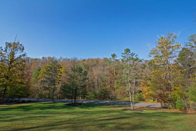 Lewisburg WV Residential Lots & Land For Sale: $30,000