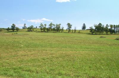 Lewisburg Residential Lots & Land For Sale