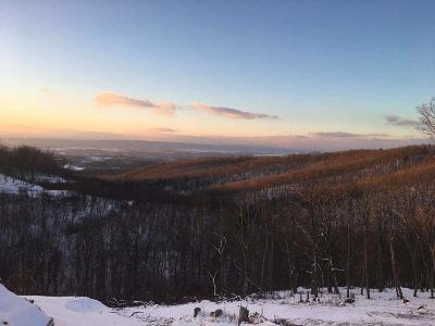 Residential Lots & Land For Sale: LOT 70 Overlook At Greenbrier