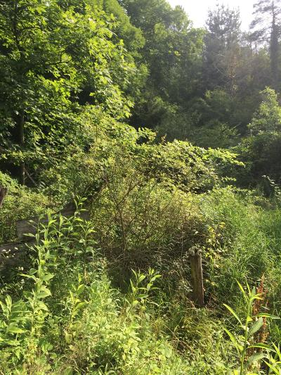 Residential Lots & Land For Sale: Backus Mountain Rd