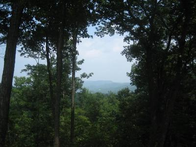 White Sulphur Springs Residential Lots & Land For Sale: 358 Summit Village Trail