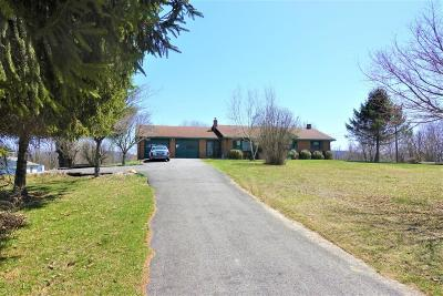 Frankford Single Family Home For Sale: 1117 Boone Mtn Rd.