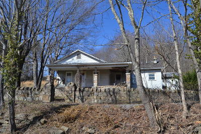 Nettie WV Single Family Home For Sale: $65,000