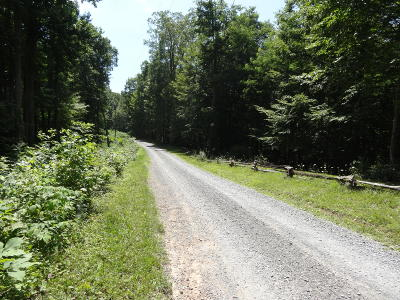 Alderson WV Residential Lots & Land For Sale: $20,000
