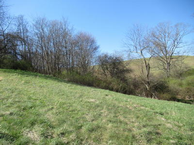 Lewisburg WV Residential Lots & Land For Sale: $15,000