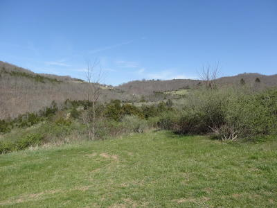 Wolf Creek WV Residential Lots & Land For Sale: $40,000