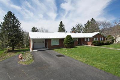 White Sulphur Springs Single Family Home For Sale: 309 Rowan Rd