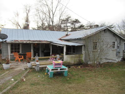 Ronceverte Single Family Home For Sale: 356 Gypsy Heights Road