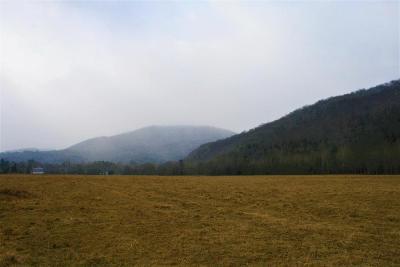 White Sulphur Springs Farm For Sale: 9435 Pocahontas Trl