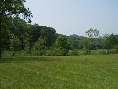 White Sulphur Springs Residential Lots & Land For Sale: 685 Sam Snead Drive