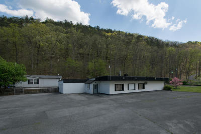 Greenbrier County Commercial For Sale: 1185-1187 Tuckahoe Rd