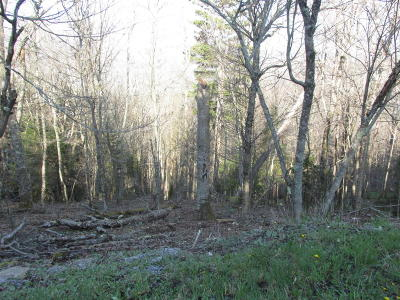 Residential Lots & Land For Sale: 25 NORTH West Ridge