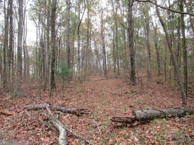 White Sulphur Springs Residential Lots & Land For Sale: LOT 60 Greenbrier Vista