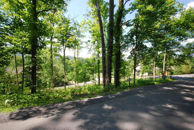 White Sulphur Springs Residential Lots & Land For Sale: 124 White Sulphur Drive