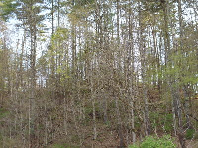 White Sulphur Springs Residential Lots & Land For Sale: Trail Ln