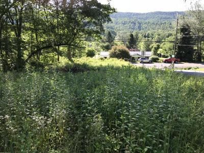 Residential Lots & Land For Sale: Route 20