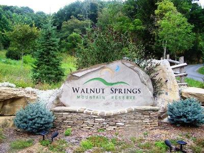 Fayette County, Greenbrier County, Mercer County, Monroe County, Nicholas County, Pocahontas County, Raleigh County, Summers County Residential Lots & Land For Sale: Walnut Springs