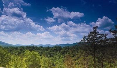 White Sulphur Springs Residential Lots & Land For Sale: 763 Bear Cub Trail