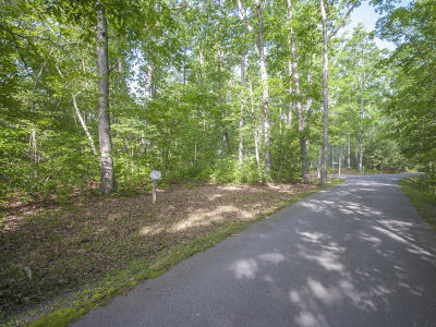 White Sulphur Springs Residential Lots & Land For Sale: 174 Buchanan Ridge
