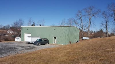 Greenbrier County Commercial For Sale: 16038 Seneca Trail N. Rt 219
