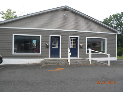 Greenbrier County Commercial For Sale: 9501 A & B Seneca Trail