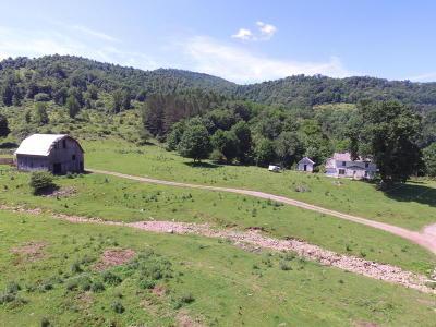 Farm For Sale: Big Springs Elk