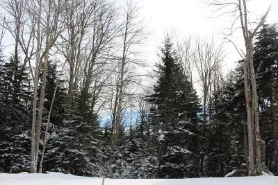Residential Lots & Land For Sale: Lot #2 Silver Mountain