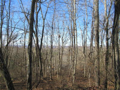 Greenbrier County Residential Lots & Land For Sale: Ballard Drive