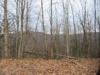 Greenbrier County Residential Lots & Land For Sale: Lot 32 Katy Drive