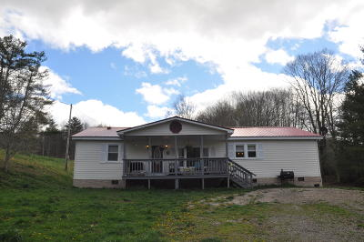 Greenbrier County Single Family Home For Sale: 787 Cold Hollow Road