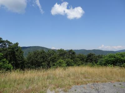 Greenbrier County Residential Lots & Land For Sale: Lot 29 Katy Drive