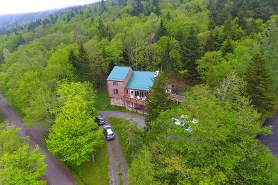 Snowshoe WV Single Family Home For Sale: $389,900