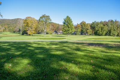 White Sulphur Springs Residential Lots & Land For Sale: 304 Cottage Lane