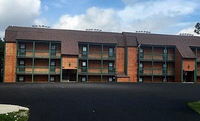 Snowshoe WV Condo/Townhouse For Sale: $42,500